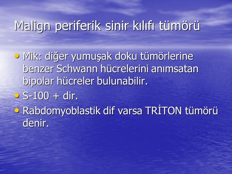 Malign periferik sinir kılıfı tümörü