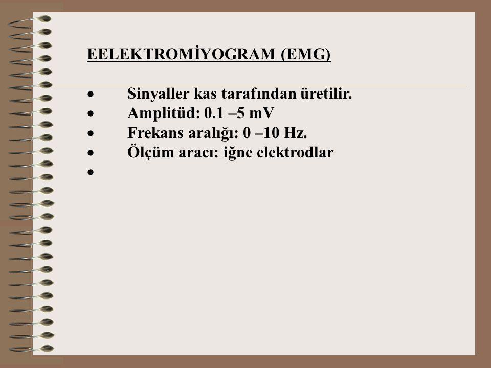 EELEKTROMİYOGRAM (EMG)