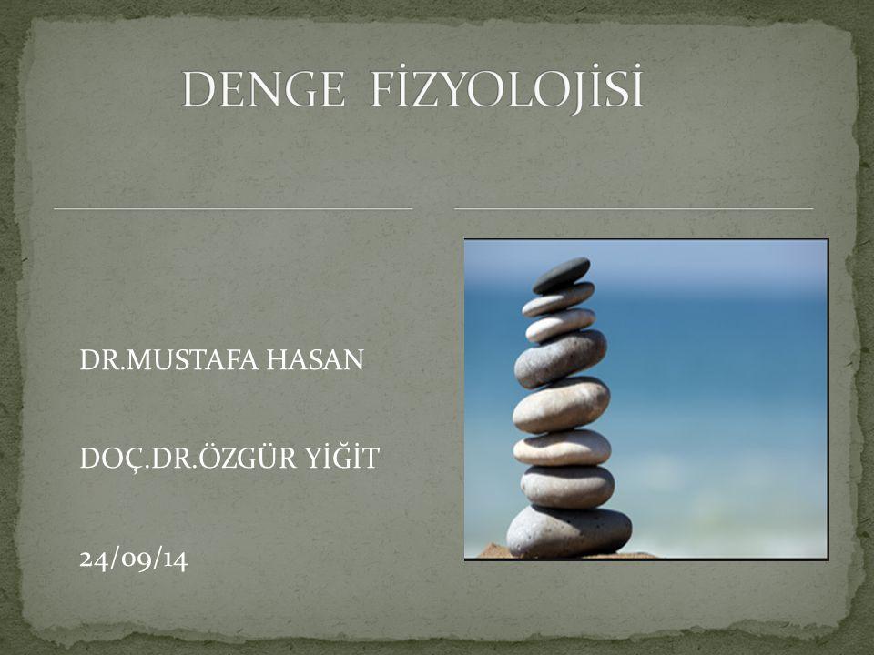 DENGE FİZYOLOJİSİ DR.MUSTAFA HASAN DOÇ.DR.ÖZGÜR YİĞİT 24/09/14
