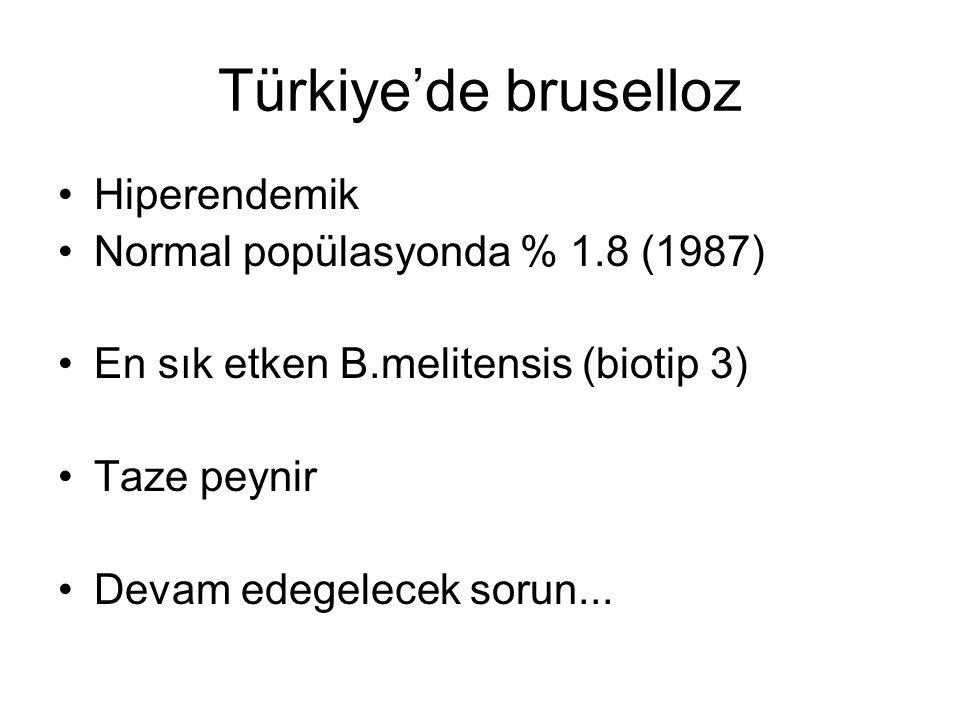 Türkiye'de bruselloz Hiperendemik Normal popülasyonda % 1.8 (1987)