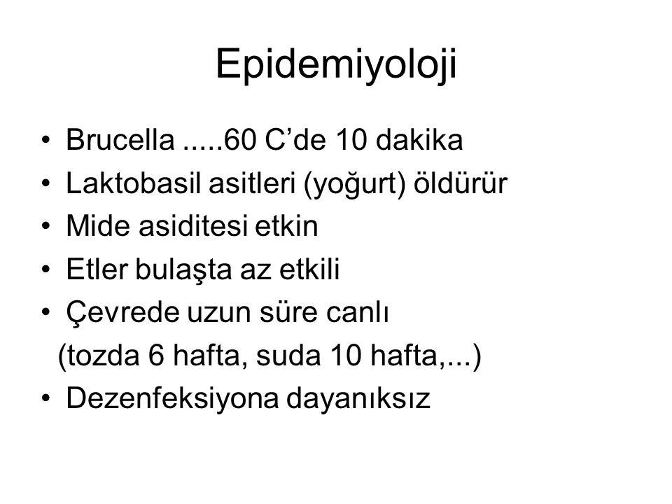 Epidemiyoloji Brucella .....60 C'de 10 dakika