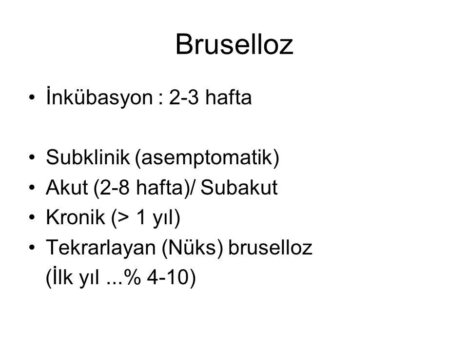 Bruselloz İnkübasyon : 2-3 hafta Subklinik (asemptomatik)