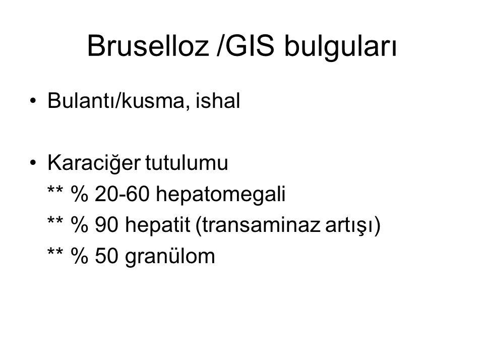 Bruselloz /GIS bulguları
