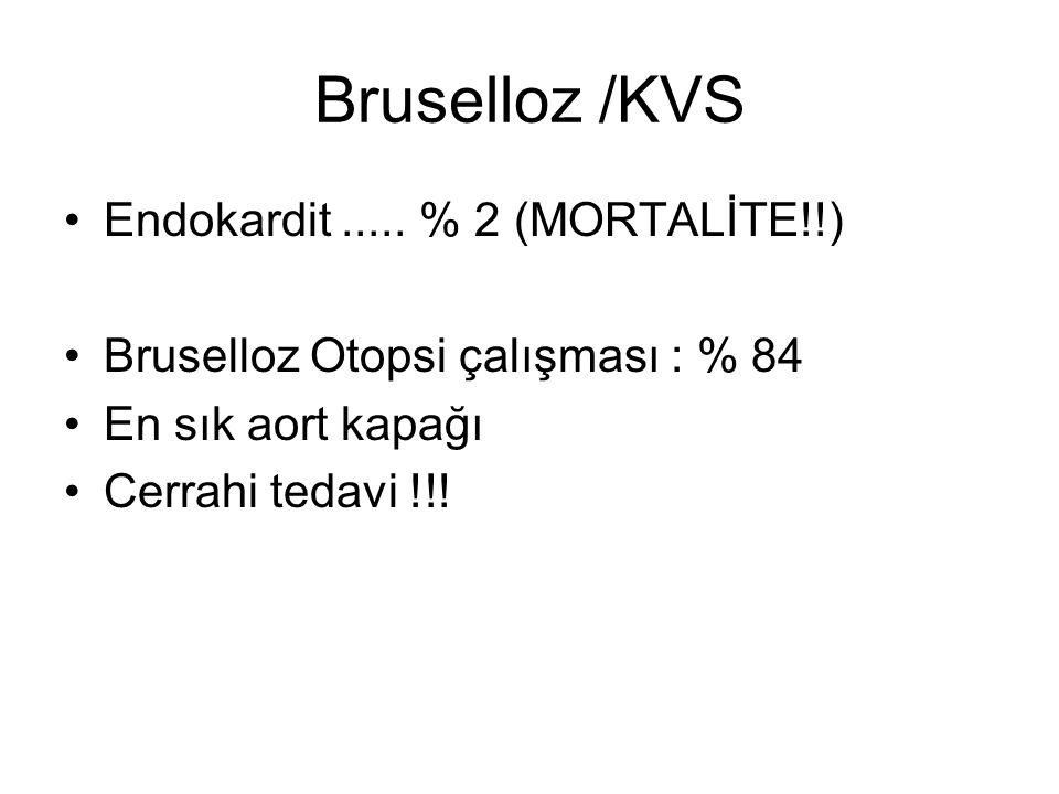 Bruselloz /KVS Endokardit ..... % 2 (MORTALİTE!!)