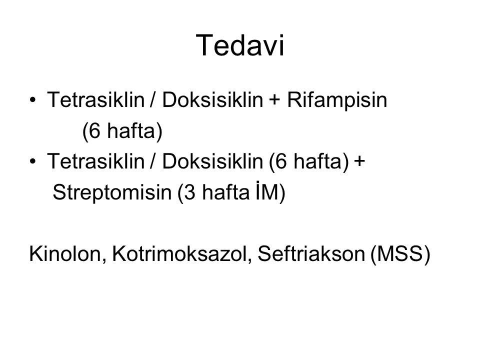 Tedavi Tetrasiklin / Doksisiklin + Rifampisin (6 hafta)