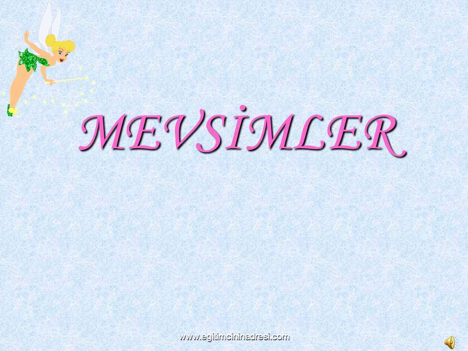 MEVSİMLER www.egitimcininadresi.com