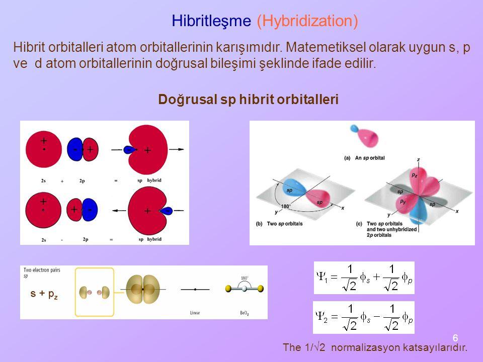 Hibritleşme (Hybridization)