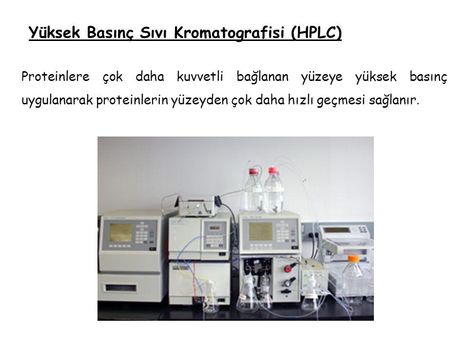Yüksek Basınç Sıvı Kromatografisi (HPLC)