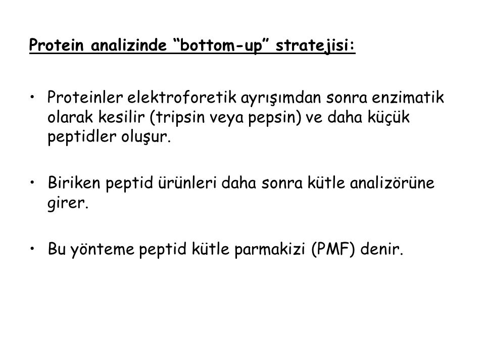 Protein analizinde bottom-up stratejisi: