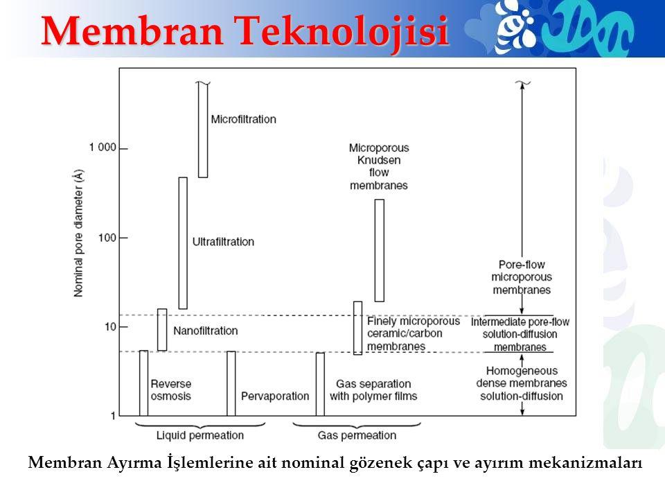 Membran Teknolojisi