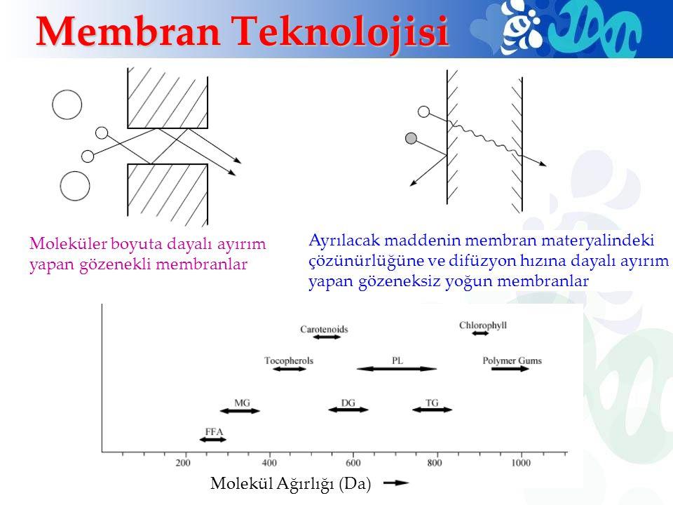 Membran Teknolojisi Moleküler boyuta dayalı ayırım yapan gözenekli membranlar.