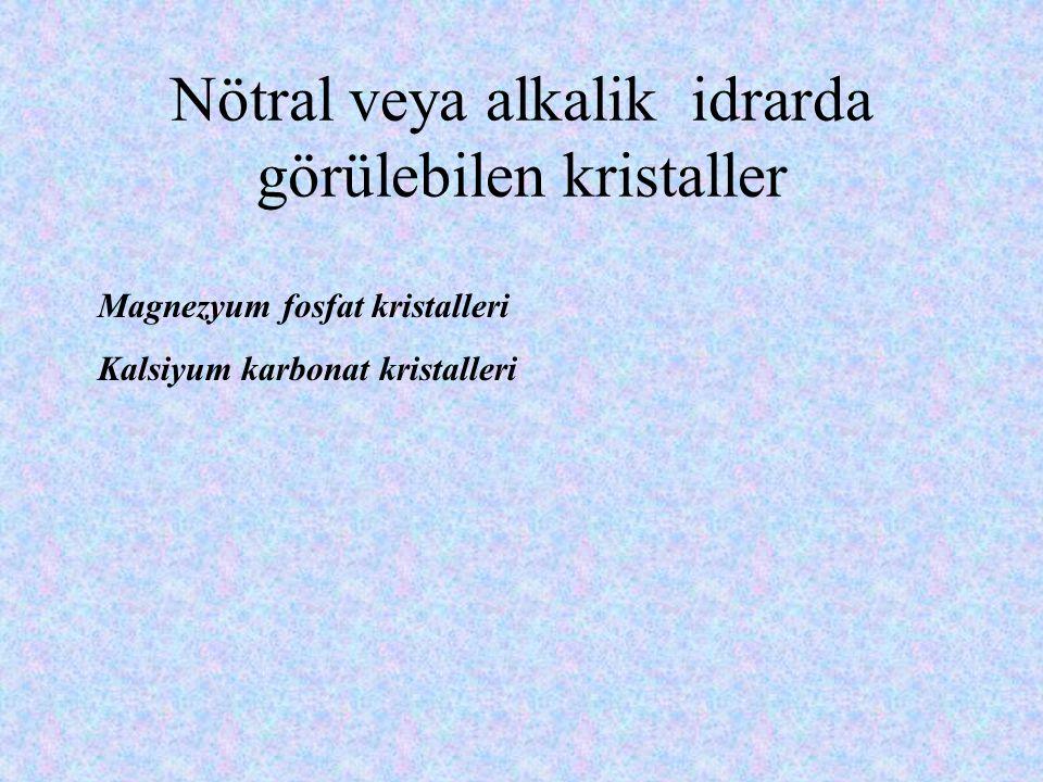 Nötral veya alkalik idrarda görülebilen kristaller