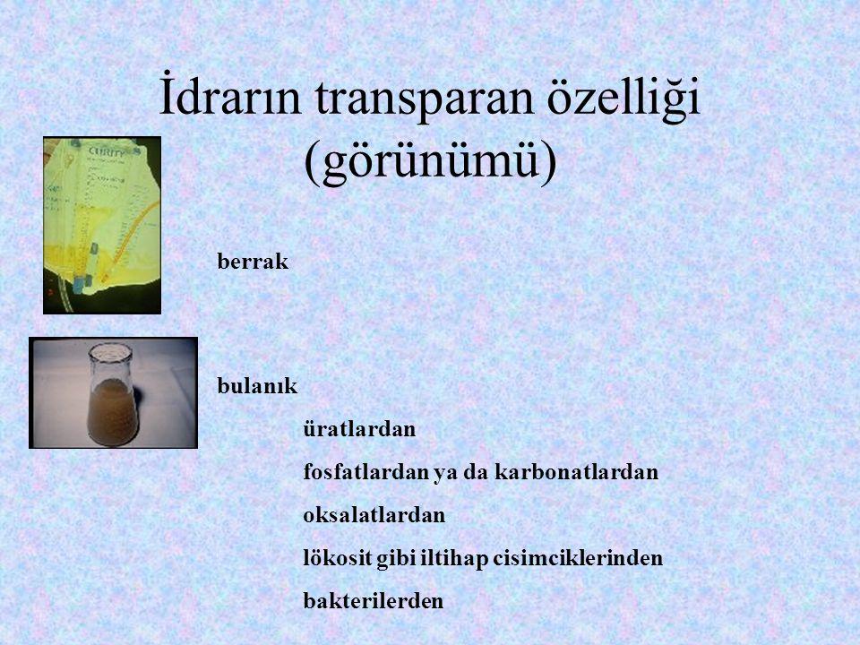 İdrarın transparan özelliği (görünümü)