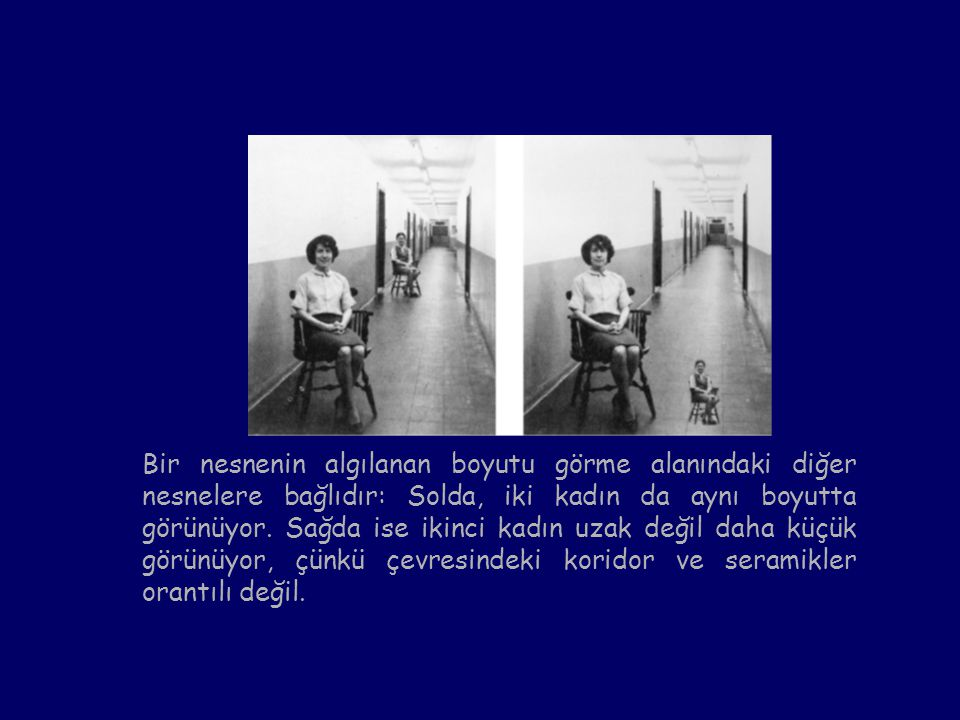 Bir nesnenin algılanan boyutu görme alanındaki diğer nesnelere bağlıdır: Solda, iki kadın da aynı boyutta görünüyor.