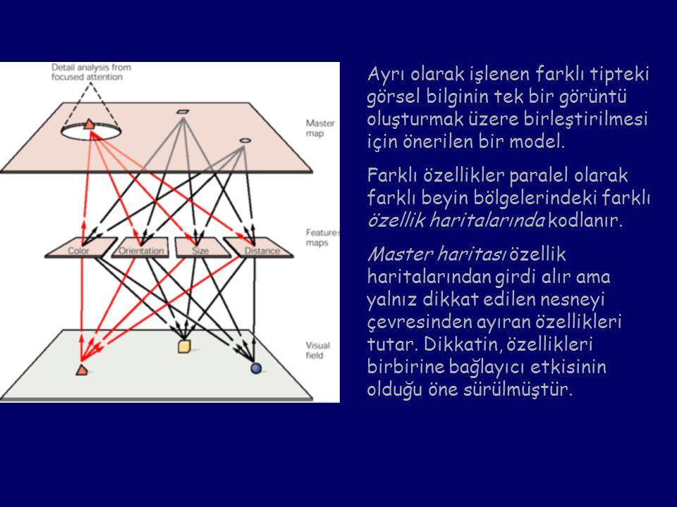 Ayrı olarak işlenen farklı tipteki görsel bilginin tek bir görüntü oluşturmak üzere birleştirilmesi için önerilen bir model.