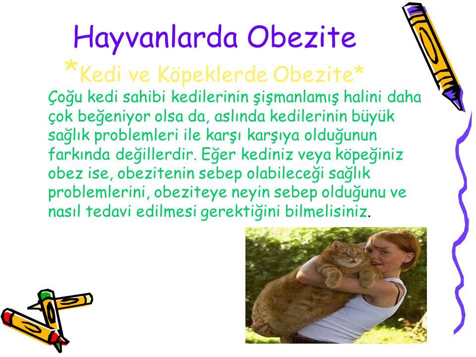 Hayvanlarda Obezite *Kedi ve Köpeklerde Obezite*