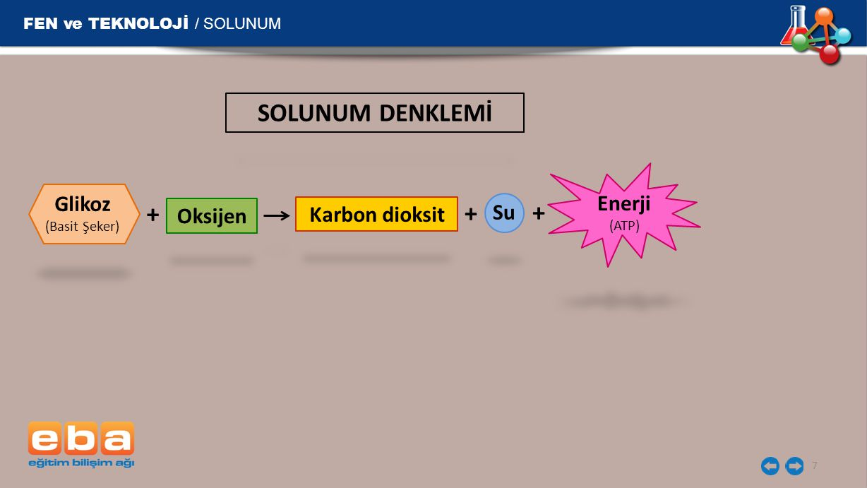 SOLUNUM DENKLEMİ + + + FEN ve TEKNOLOJİ / SOLUNUM Glikoz Enerji Su