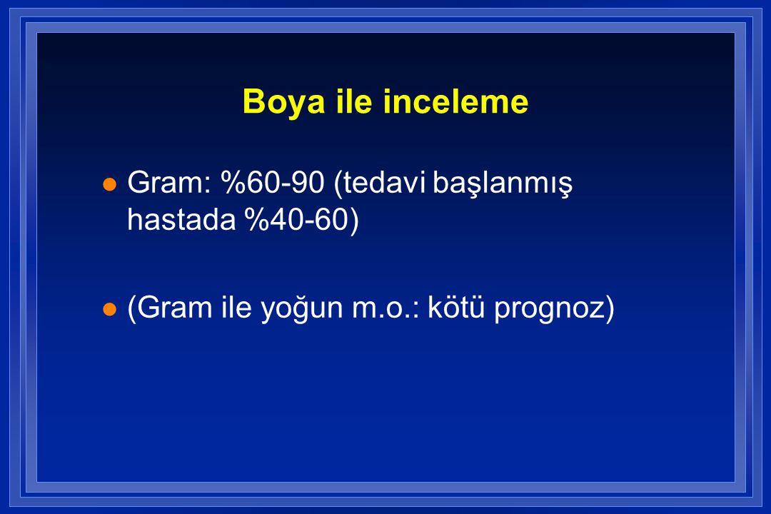 Boya ile inceleme Gram: %60-90 (tedavi başlanmış hastada %40-60)
