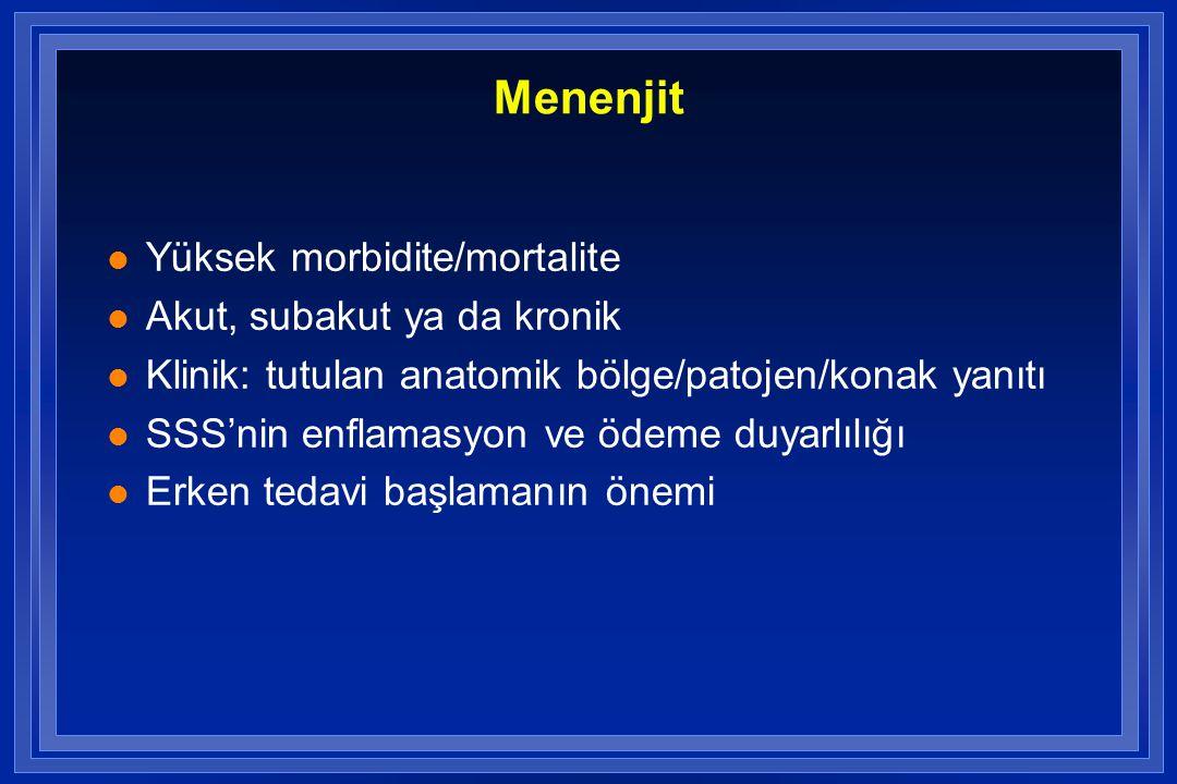 Menenjit Yüksek morbidite/mortalite Akut, subakut ya da kronik
