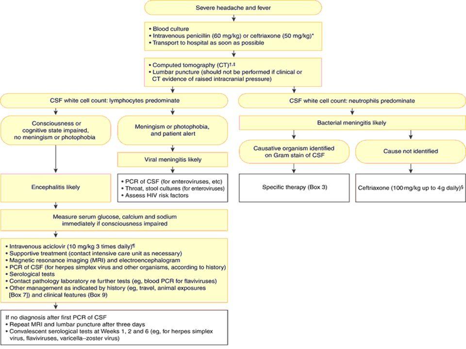 2: Diagnosis and management of acute meningitis and encephalitis