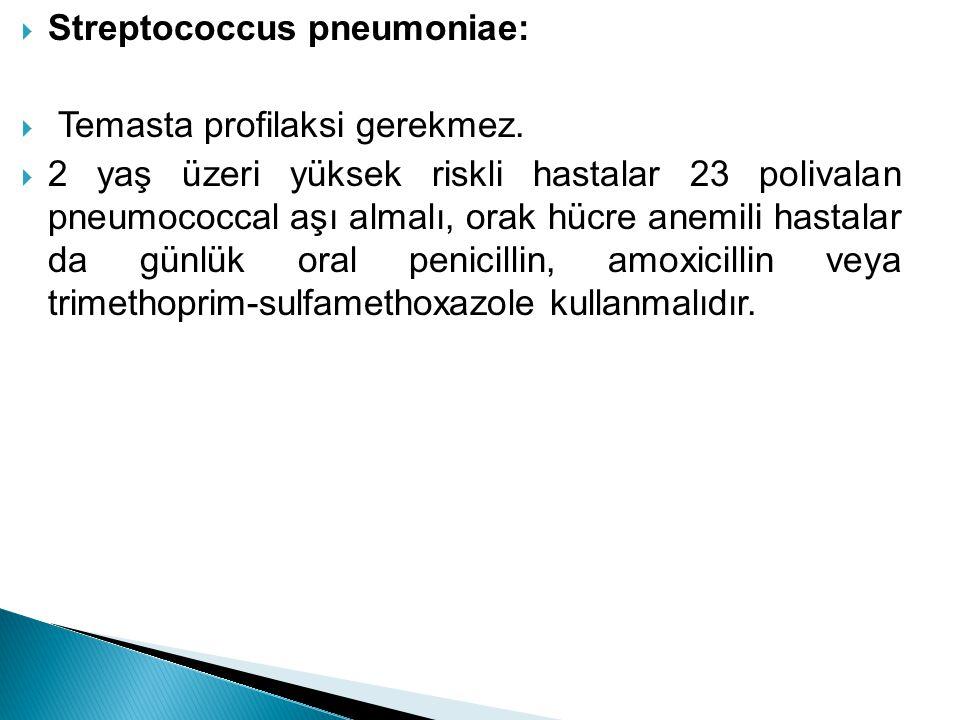 Streptococcus pneumoniae: