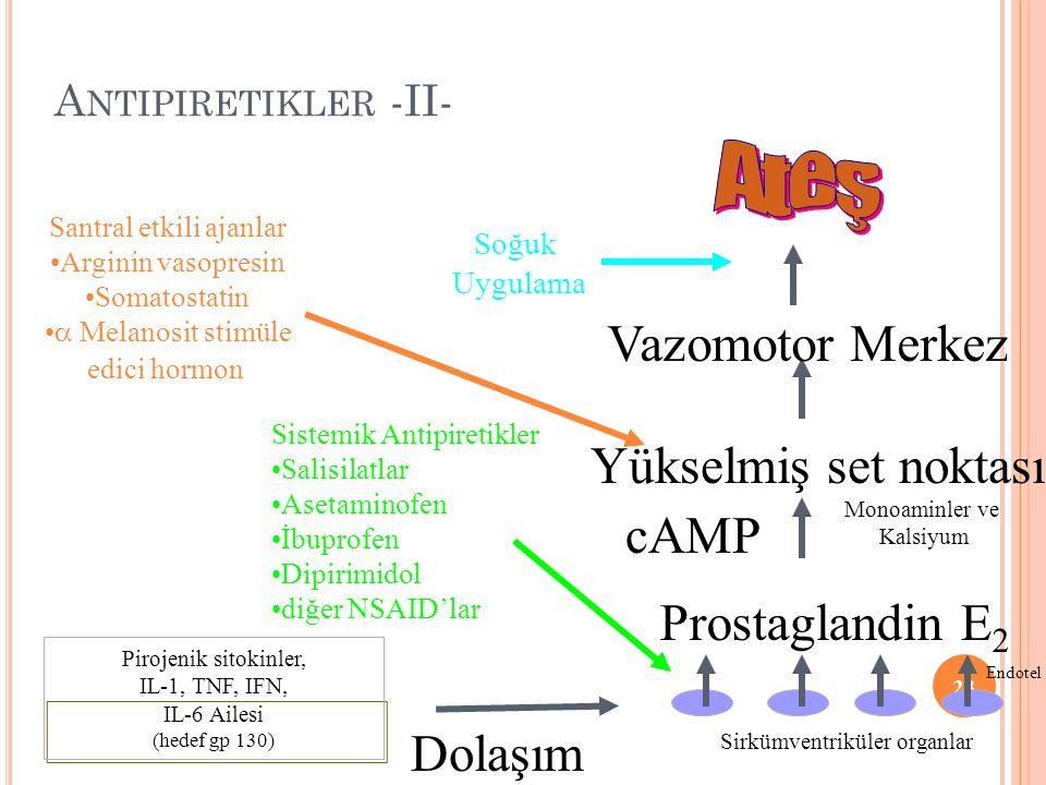 Ateş Vazomotor Merkez Yükselmiş set noktası cAMP Prostaglandin E2