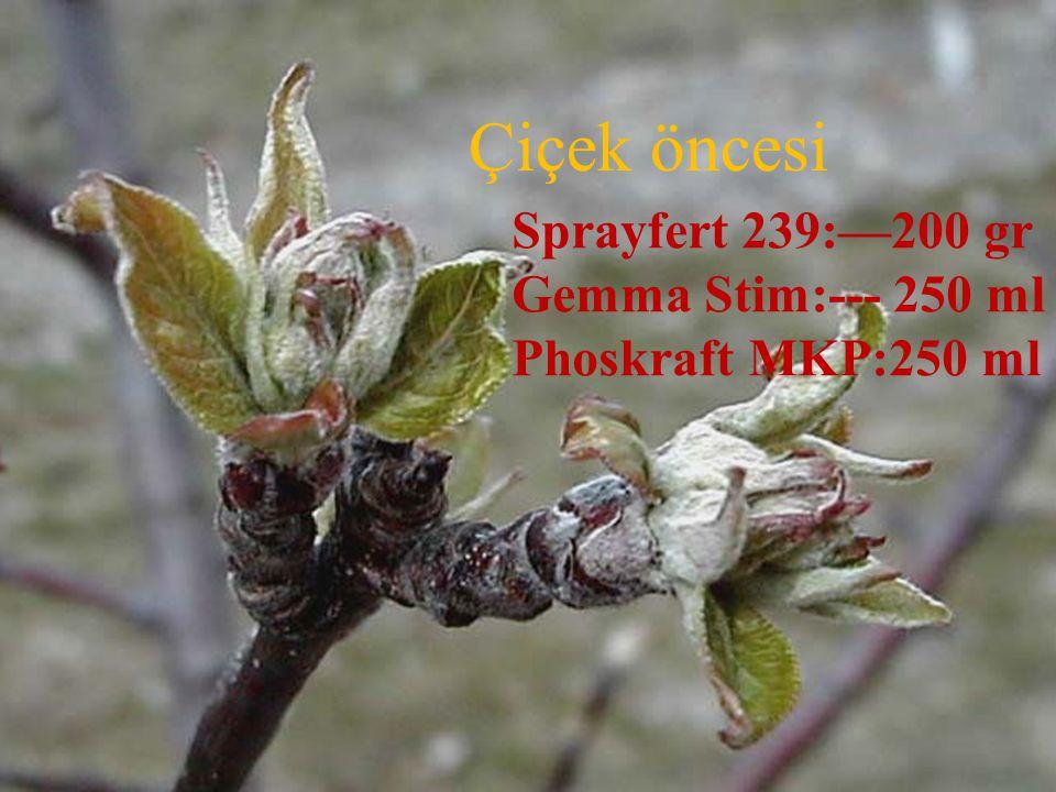 Çiçek öncesi Sprayfert 239:—200 gr Gemma Stim:--- 250 ml
