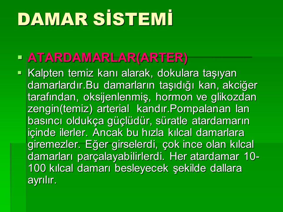 DAMAR SİSTEMİ ATARDAMARLAR(ARTER)
