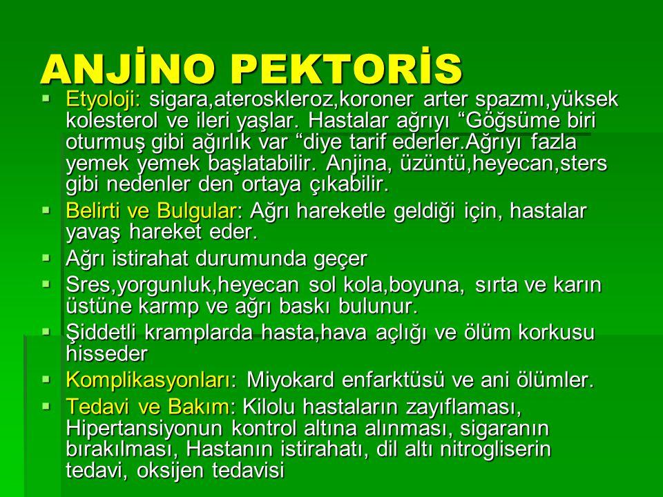 ANJİNO PEKTORİS