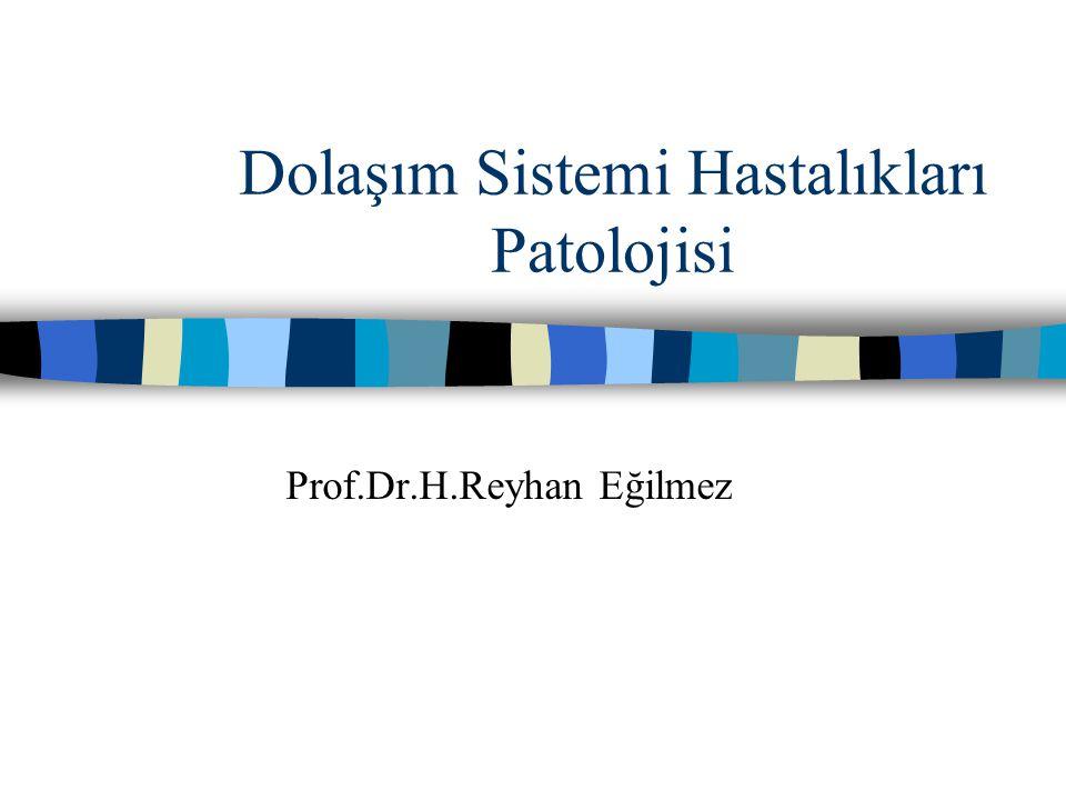 Dolaşım Sistemi Hastalıkları Patolojisi