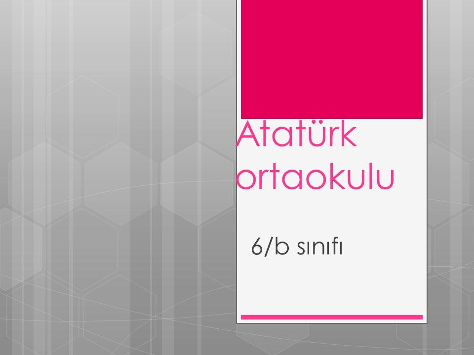 Atatürk ortaokulu 6/b sınıfı