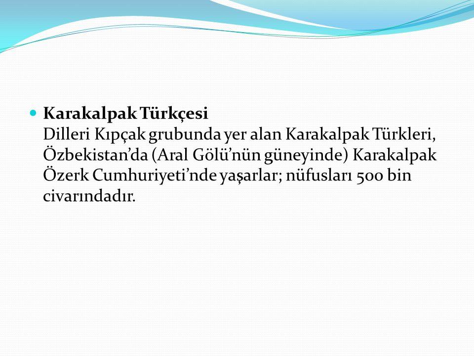 Karakalpak Türkçesi Dilleri Kıpçak grubunda yer alan Karakalpak Türkleri, Özbekistan'da (Aral Gölü'nün güneyinde) Karakalpak Özerk Cumhuriyeti'nde yaşarlar; nüfusları 500 bin civarındadır.
