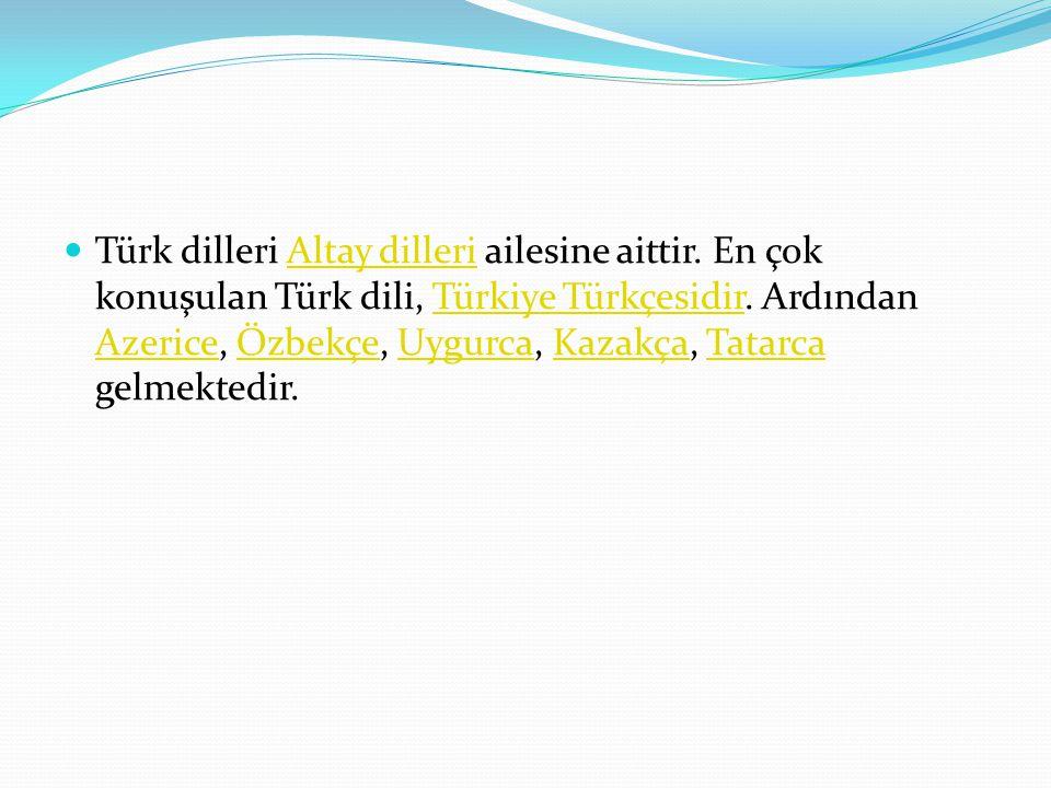 Türk dilleri Altay dilleri ailesine aittir