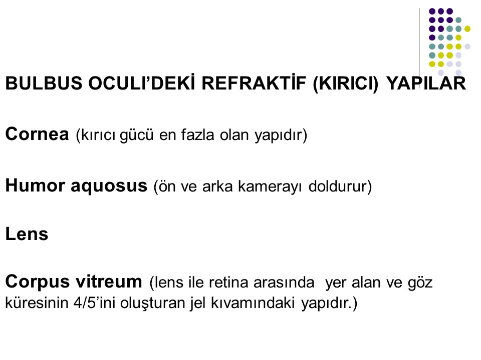 BULBUS OCULI'DEKİ REFRAKTİF (KIRICI) YAPILAR