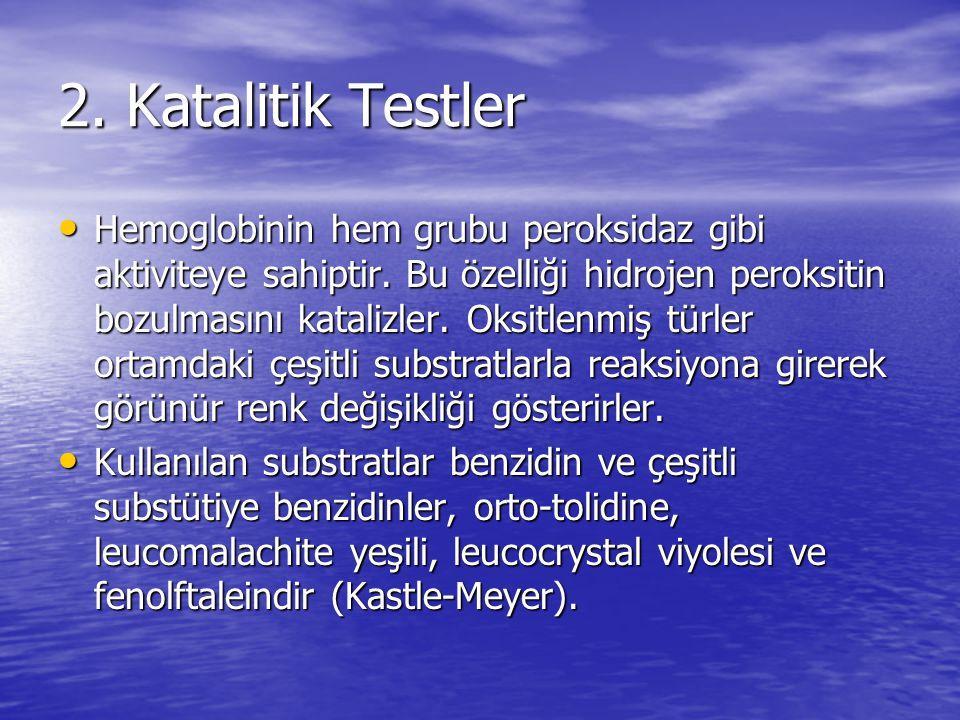 2. Katalitik Testler