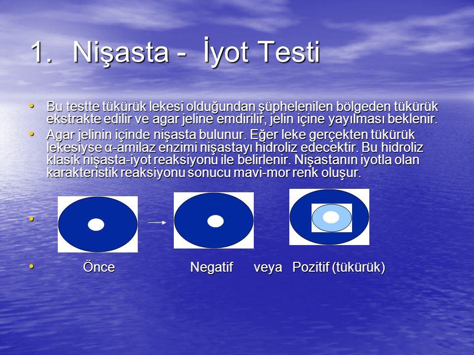 Nişasta - İyot Testi