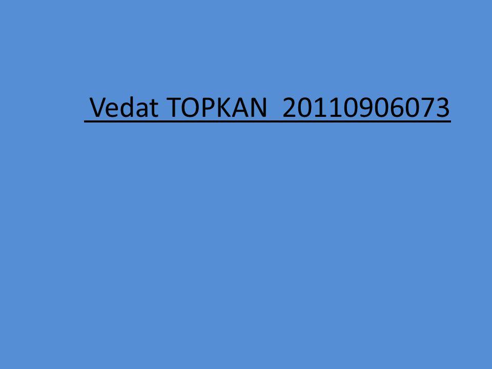 Vedat TOPKAN 20110906073