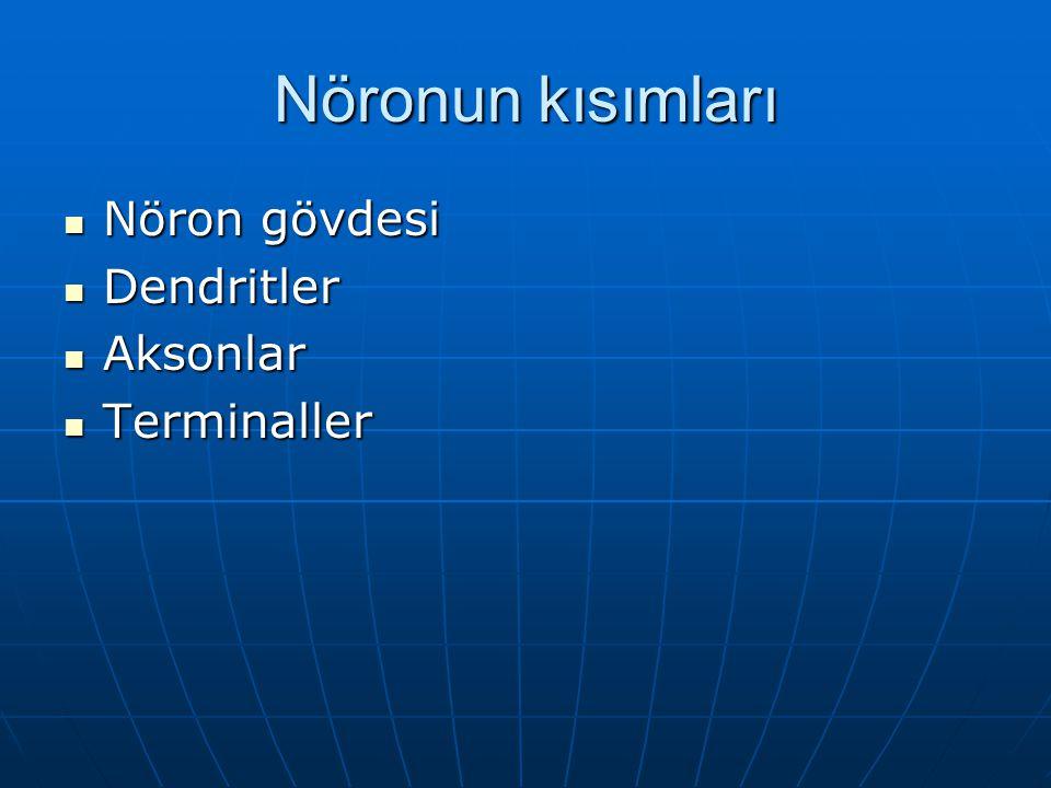 Nöronun kısımları Nöron gövdesi Dendritler Aksonlar Terminaller