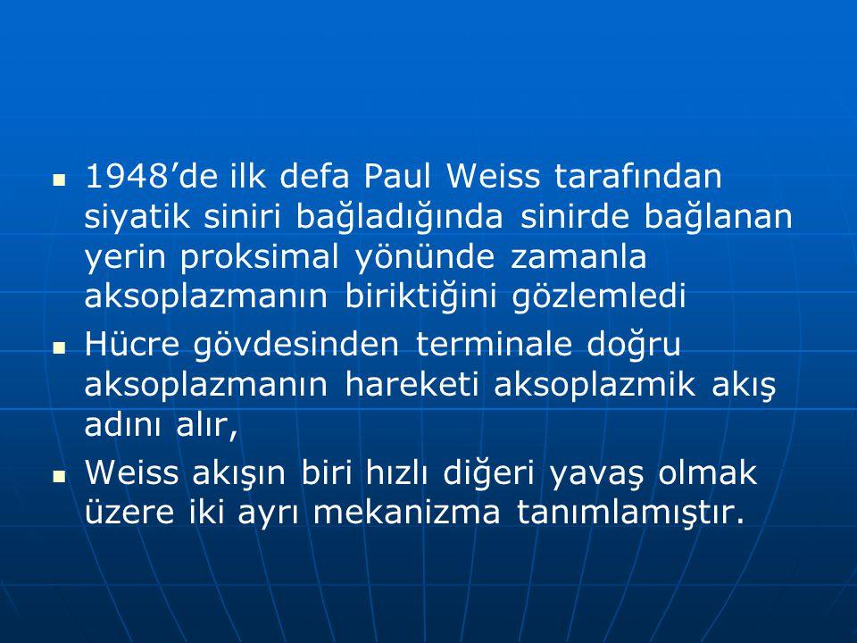1948'de ilk defa Paul Weiss tarafından siyatik siniri bağladığında sinirde bağlanan yerin proksimal yönünde zamanla aksoplazmanın biriktiğini gözlemledi