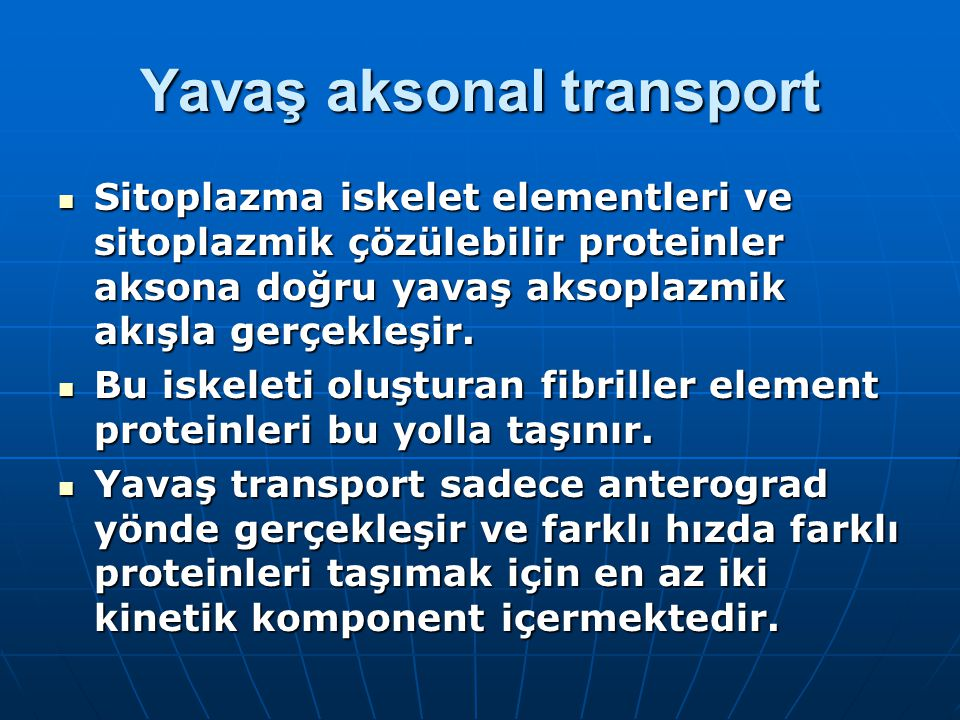 Yavaş aksonal transport