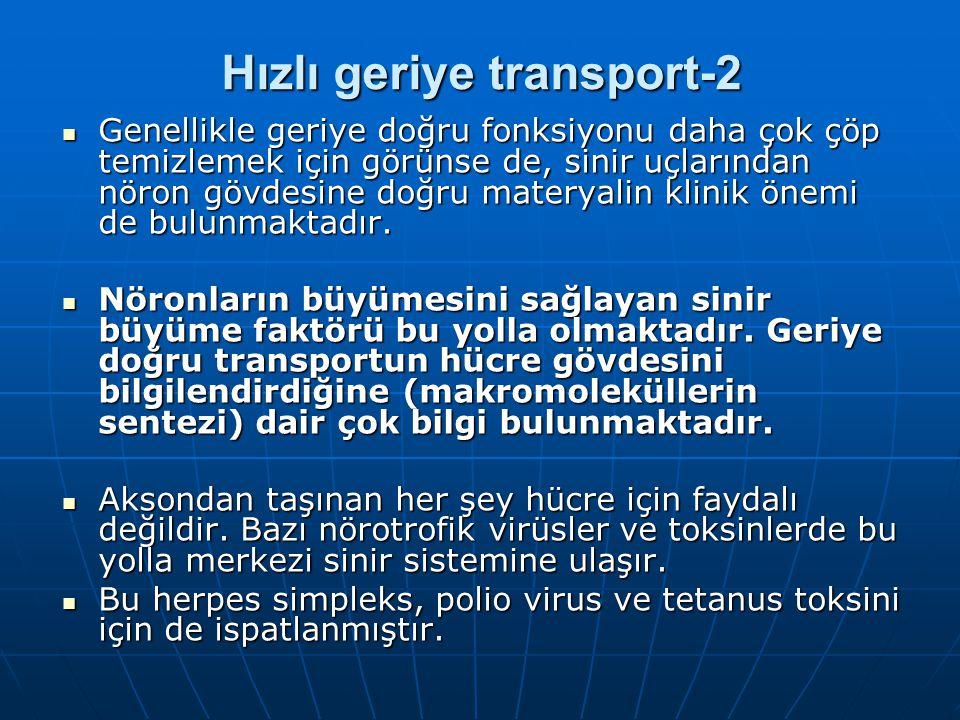 Hızlı geriye transport-2