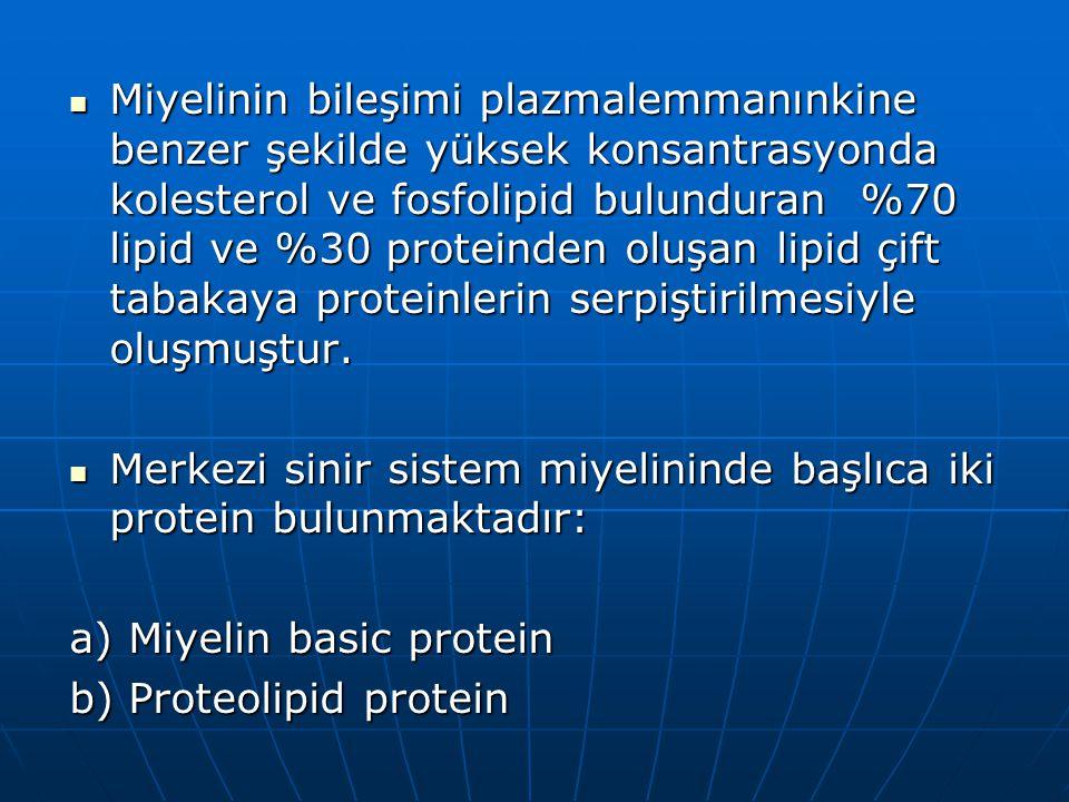 Miyelinin bileşimi plazmalemmanınkine benzer şekilde yüksek konsantrasyonda kolesterol ve fosfolipid bulunduran %70 lipid ve %30 proteinden oluşan lipid çift tabakaya proteinlerin serpiştirilmesiyle oluşmuştur.