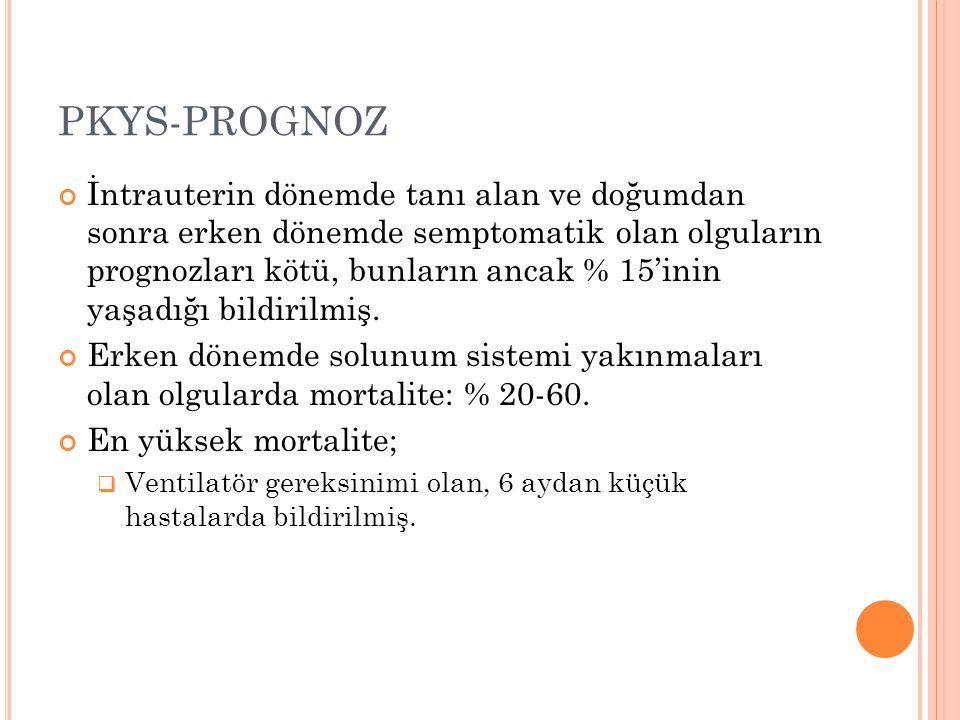 PKYS-PROGNOZ