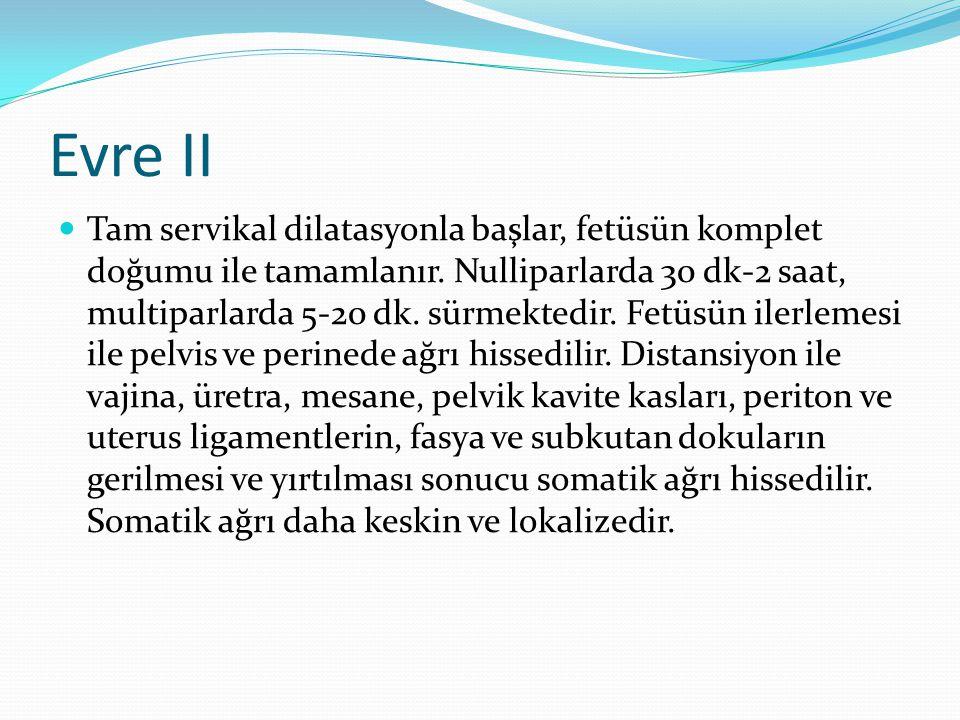 Evre II