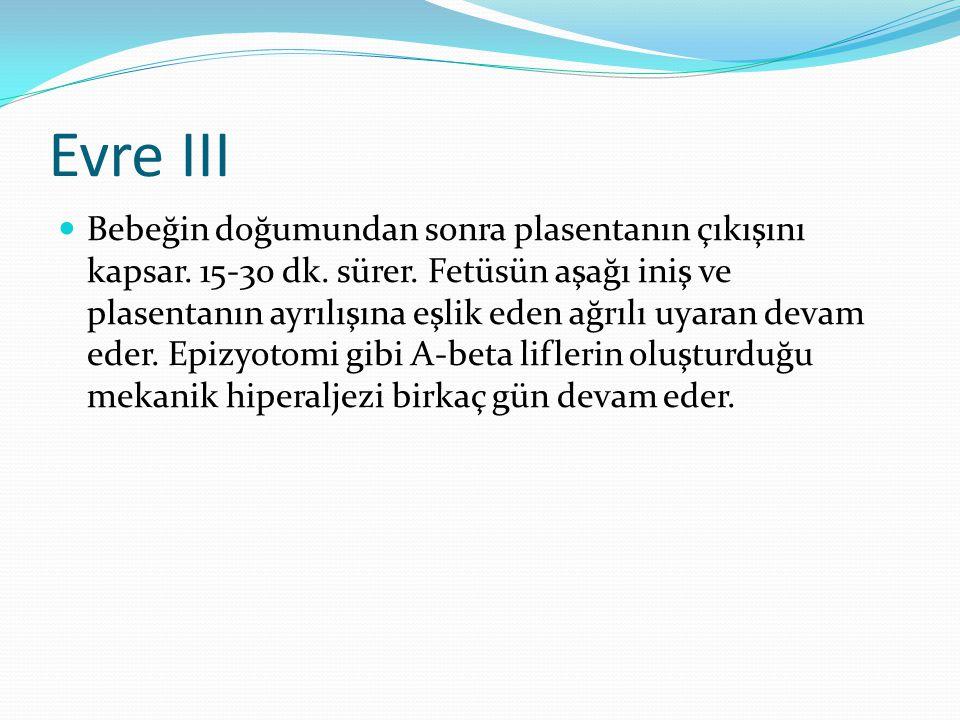 Evre III