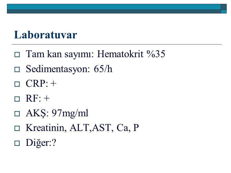 Laboratuvar Tam kan sayımı: Hematokrit %35 Sedimentasyon: 65/h CRP: +