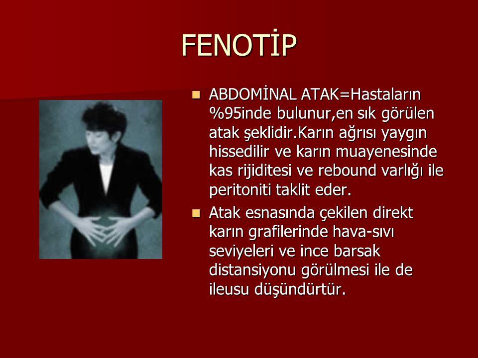 FENOTİP