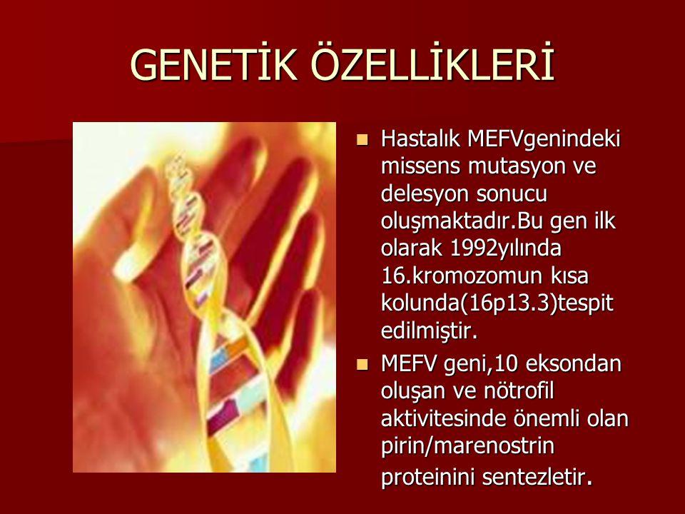 GENETİK ÖZELLİKLERİ