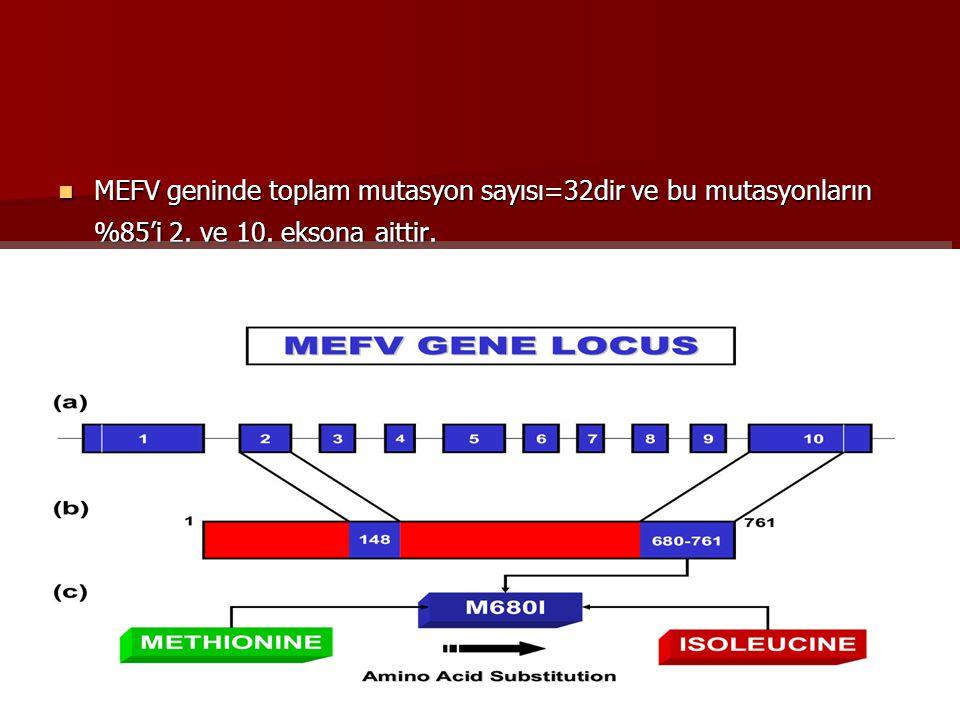 MEFV geninde toplam mutasyon sayısı=32dir ve bu mutasyonların %85'i 2
