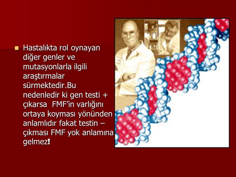 Hastalıkta rol oynayan diğer genler ve mutasyonlarla ilgili araştırmalar sürmektedir.Bu nedenledir ki gen testi + çıkarsa FMF'in varlığını ortaya koyması yönünden anlamlıdır fakat testin – çıkması FMF yok anlamına gelmez!